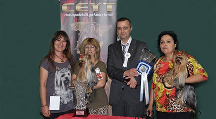 Multi Ch Galilea de Marvels Lux BEST in SHOW