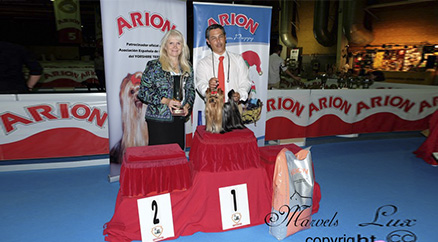 Galilea New CHAMPION de la AECYT