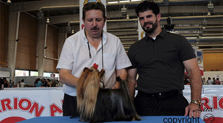 Nuestra yorki Galilea es presentada por Raul Perez del afijo Americano Rama´s