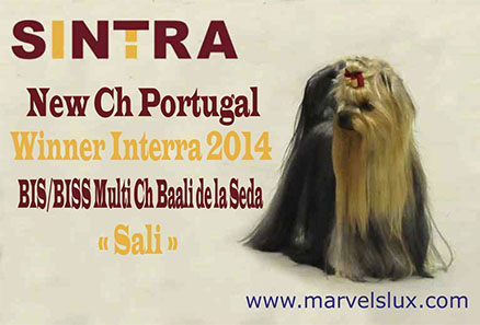 Nueva Campeona de Portugal y Winner Interra 2014